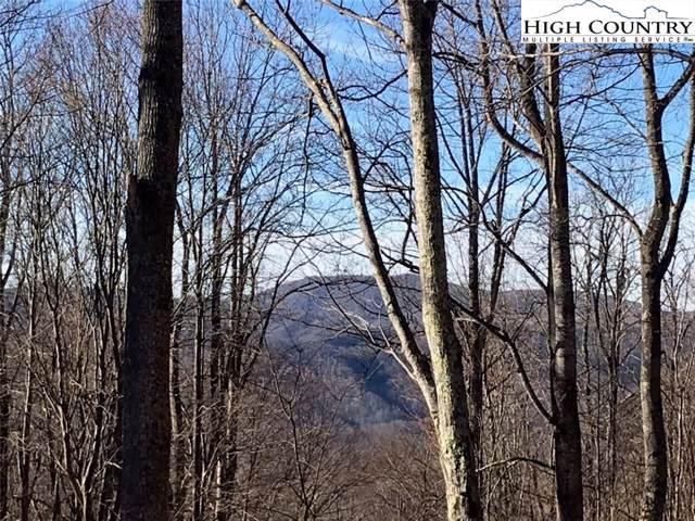 Lot 13 Quail Trail, Zionville, NC 28698 (#219767) :: Mossy Oak Properties Land and Luxury