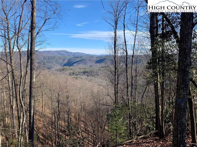 TBD Deer Grass Trail, Boone, NC 28607 (MLS #219900) :: RE/MAX Impact Realty
