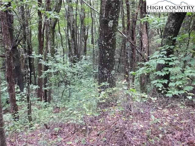 lot 22 Endless View, West Jefferson, NC 28694 (MLS #220025) :: RE/MAX Impact Realty