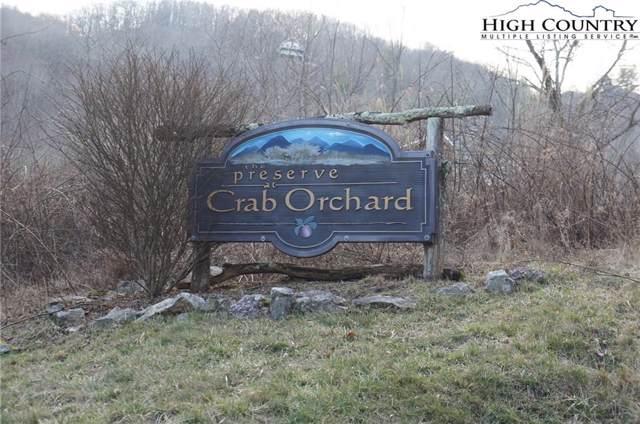 TBD Crab Orchard Boulevard, Banner Elk, NC 28604 (MLS #220061) :: RE/MAX Impact Realty