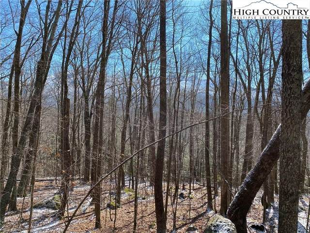 TBD Letterfern Drive, Banner Elk, NC 28604 (MLS #220227) :: RE/MAX Impact Realty