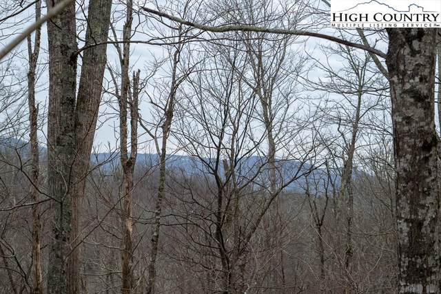 TBD Grouse Moor Drive, Sugar Mountain, NC 28604 (MLS #220329) :: RE/MAX Impact Realty