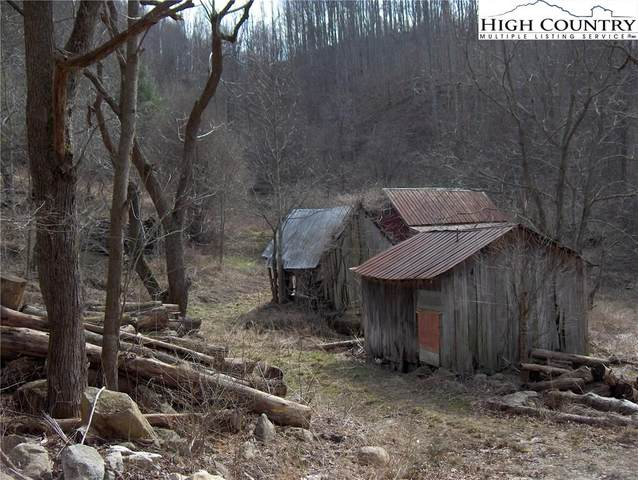 156 Mcguire Lane, Beech Mountain, NC 28622 (MLS #220330) :: RE/MAX Impact Realty