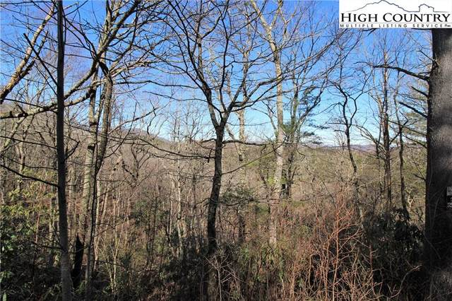Lot 28 Woodland Shores Drive, Jefferson, NC 28640 (#220630) :: Mossy Oak Properties Land and Luxury