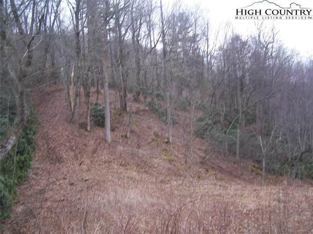tbd Gable Farm Road, Boone, NC 28607 (#220759) :: Mossy Oak Properties Land and Luxury