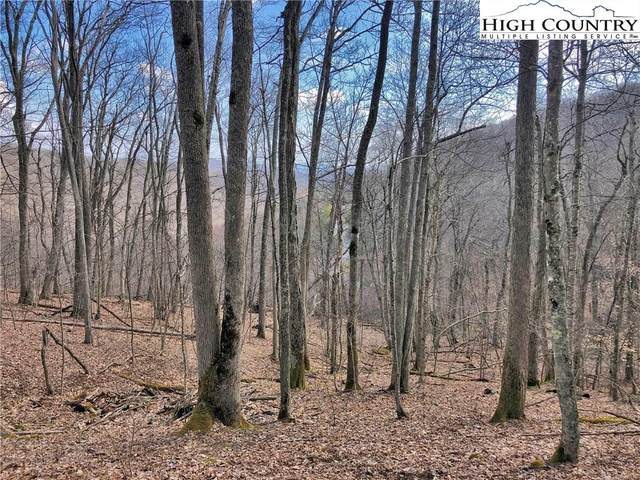 Lot 6 Rock Water West, Boone, NC 28607 (#220972) :: Mossy Oak Properties Land and Luxury