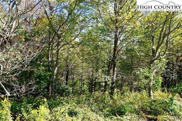 Lot #22 Center Court Drive, Boone, NC 28607 (#220982) :: Mossy Oak Properties Land and Luxury