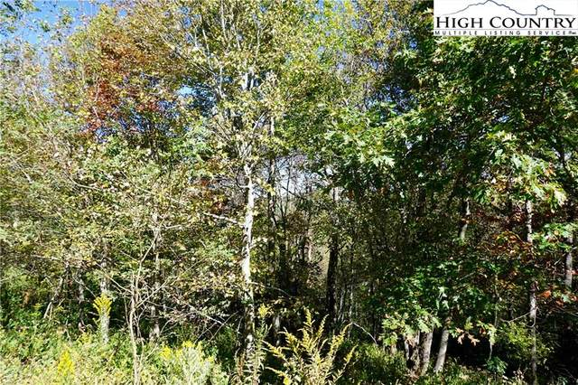 Lot #23 Center Court Drive, Boone, NC 28607 (#220983) :: Mossy Oak Properties Land and Luxury