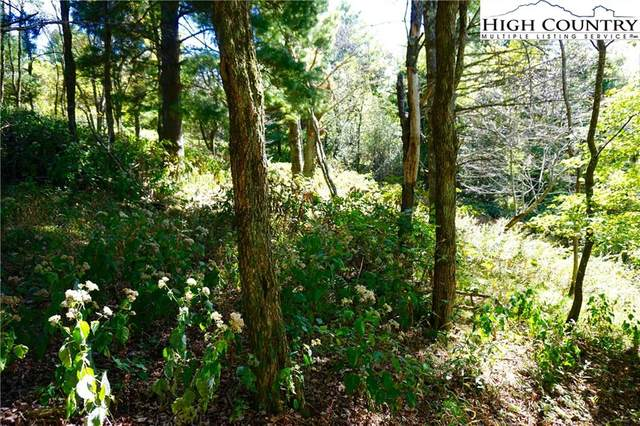 Lot #67 #68 Center Court Drive, Boone, NC 28607 (#220988) :: Mossy Oak Properties Land and Luxury