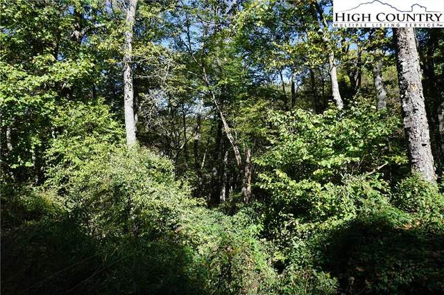 Lot #13 Tree Top Road, Boone, NC 28607 (#220991) :: Mossy Oak Properties Land and Luxury