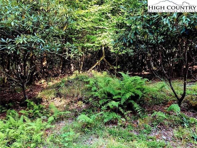 100 E Blueberry Lane, Beech Mountain, NC 28604 (#221050) :: Mossy Oak Properties Land and Luxury