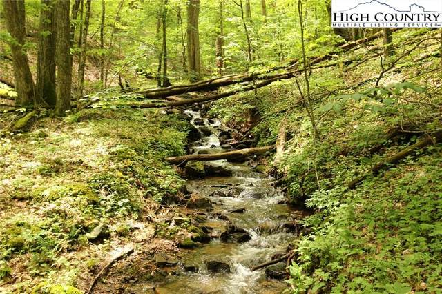 Lot 65 Madisyn Oaks Lane, Boone, NC 28607 (#221953) :: Mossy Oak Properties Land and Luxury