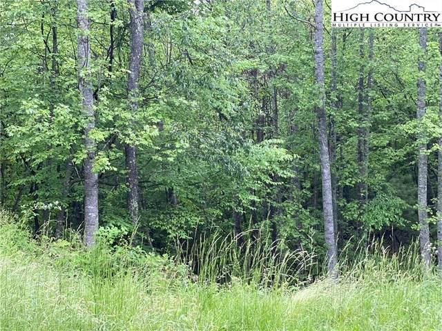 TBD Pecks Peak Rd Road, Jefferson, NC 28640 (#222046) :: Mossy Oak Properties Land and Luxury