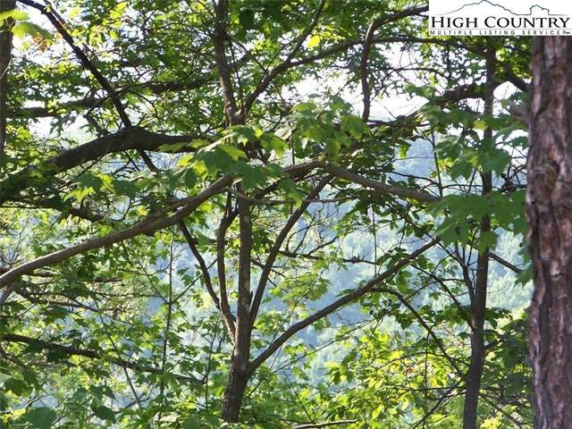 Lot 35 Dugger Firetower Road, Lenoir, NC 28645 (#222125) :: Mossy Oak Properties Land and Luxury