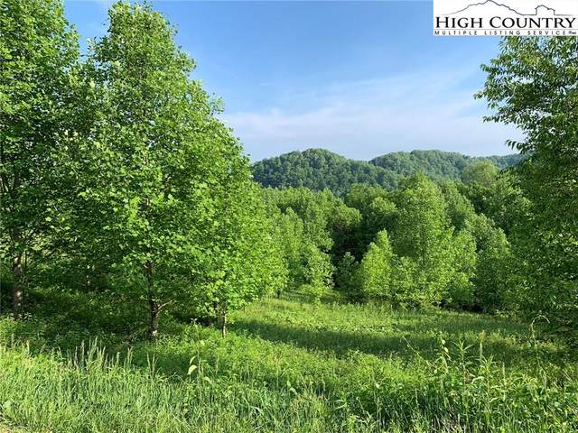 Lot 9, Pleasant View Drive, Vilas, NC 28692 (#222182) :: Mossy Oak Properties Land and Luxury