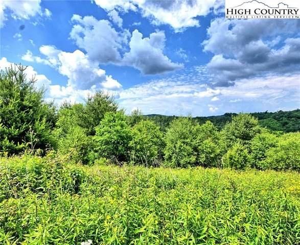 TBD (Lot 28) Green Meadows Drive, Todd, NC 28684 (#222515) :: Mossy Oak Properties Land and Luxury