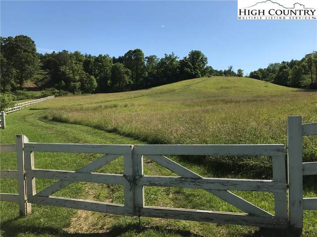 141-145 Nile Road, Sparta, NC 28675 (#222569) :: Mossy Oak Properties Land and Luxury