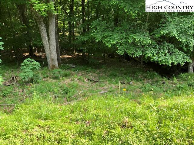 213 Sawmill Branch Road, Beech Mountain, NC 28604 (#222721) :: Mossy Oak Properties Land and Luxury