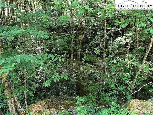 136 Wild Daisy Lane, Beech Mountain, NC 28604 (#222738) :: Mossy Oak Properties Land and Luxury
