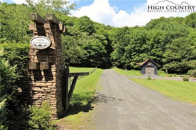 TBD Bluff Canyon Drive, West Jefferson, NC 28694 (#223380) :: Mossy Oak Properties Land and Luxury