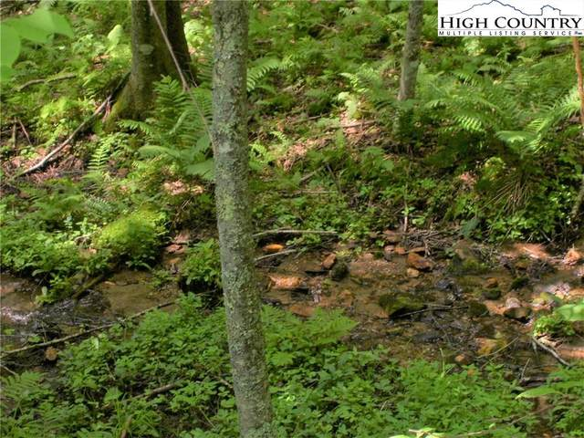 22 Pine Knoll Dr, Fleetwood, NC 28626 (#223825) :: Mossy Oak Properties Land and Luxury