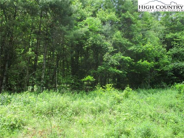 TBD Lot # 23A Rhododendron Run, Fleetwood, NC 28626 (#223998) :: Mossy Oak Properties Land and Luxury
