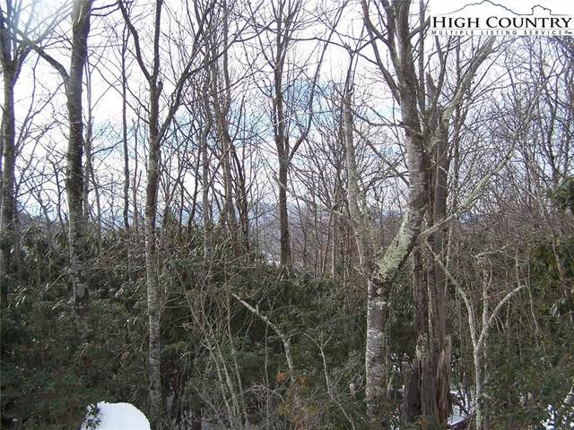 Lot 56 Algonquin Drive, Boone, NC 28607 (#224004) :: Mossy Oak Properties Land and Luxury