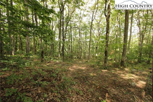 Lot 25-R Adirondack Drive, Boone, NC 28607 (#224297) :: Mossy Oak Properties Land and Luxury