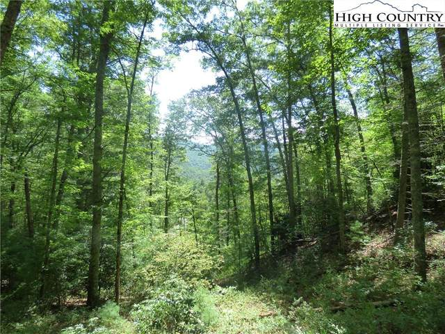 Lot 25 Smoke Rise Path, West Jefferson, NC 28694 (#224349) :: Mossy Oak Properties Land and Luxury