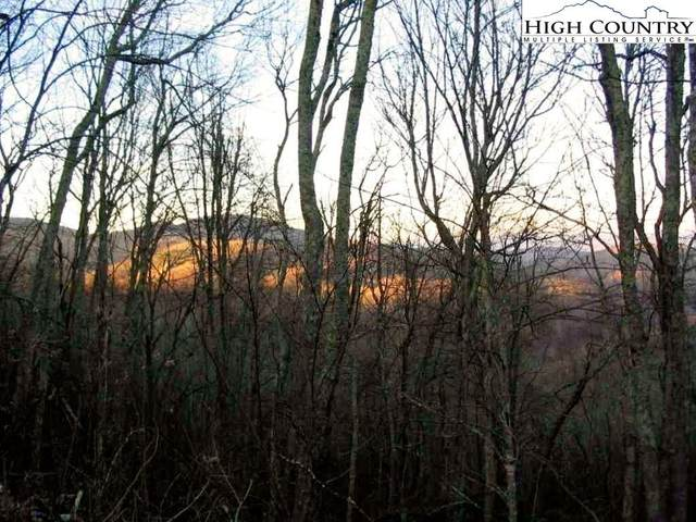 TBD Valle Vista Drive, Banner Elk, NC 28604 (#224446) :: Mossy Oak Properties Land and Luxury