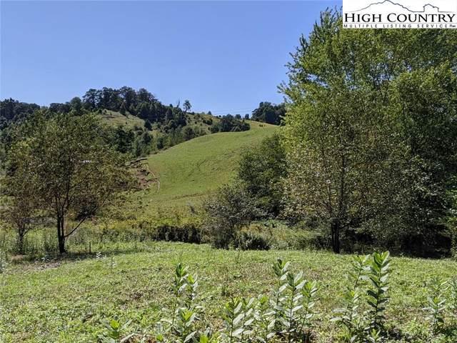 Lots 5A, 5B Kalmia Lane, Boone, NC 28607 (#224672) :: Mossy Oak Properties Land and Luxury