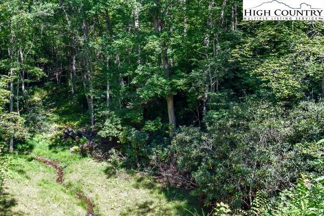 Lot 54 Mt. Valley Drive, Fleetwood, NC 28626 (#224752) :: Mossy Oak Properties Land and Luxury