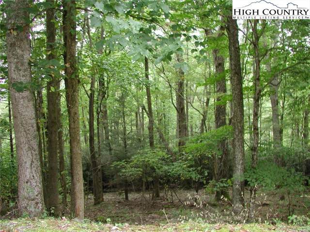 Lot 27 Lost Ridge Trail, Vilas, NC 28692 (#224851) :: Mossy Oak Properties Land and Luxury