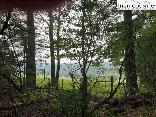 TBD High Meadows Lane, Fleetwood, NC 28626 (#224862) :: Mossy Oak Properties Land and Luxury