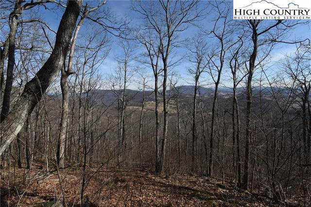 TBD Big Tree Road, West Jefferson, NC 28694 (#224923) :: Mossy Oak Properties Land and Luxury