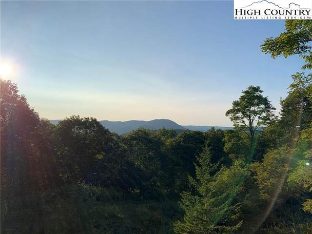 TBD Pinnacle Tree Drive, West Jefferson, NC 28694 (#224961) :: Mossy Oak Properties Land and Luxury