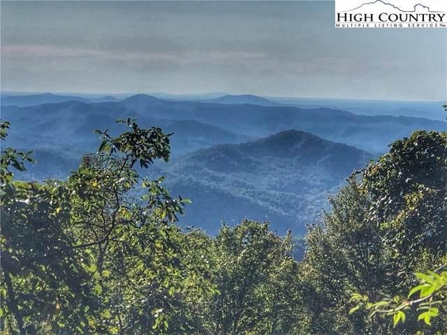 TBD Canyon Lane, Blowing Rock, NC 28605 (#224978) :: Mossy Oak Properties Land and Luxury