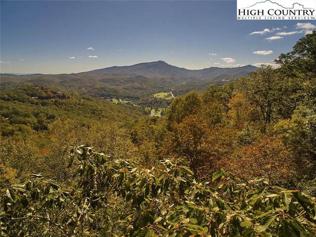 Lot 20 Hialeah Drive, Boone, NC 28607 (#225142) :: Mossy Oak Properties Land and Luxury
