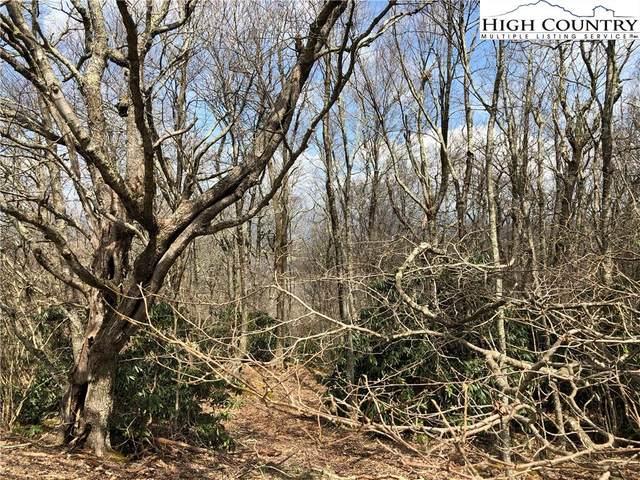 TBD High Peak Road, Boone, NC 28607 (#226218) :: Mossy Oak Properties Land and Luxury