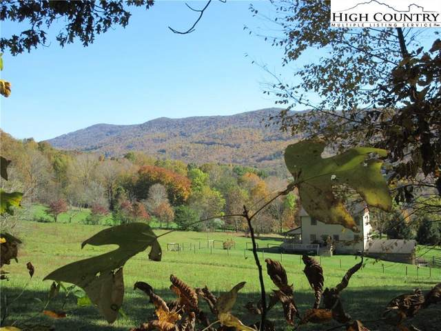 Tbd Elk Creek Mountain Parkway, Todd, NC 28684 (#226483) :: Mossy Oak Properties Land and Luxury