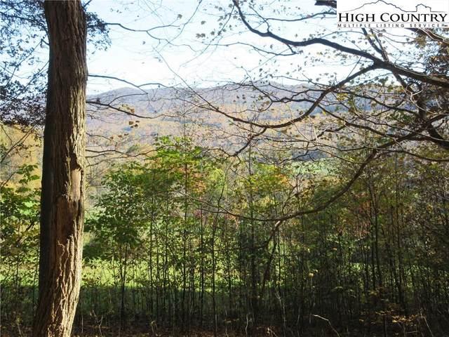 Tbd Elk Creek Mountain Parkway, Todd, NC 28684 (#226484) :: Mossy Oak Properties Land and Luxury