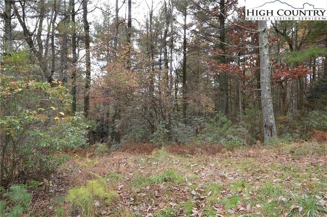 0 White Owl Drive, Glade Valley, NC 28627 (#226692) :: Mossy Oak Properties Land and Luxury