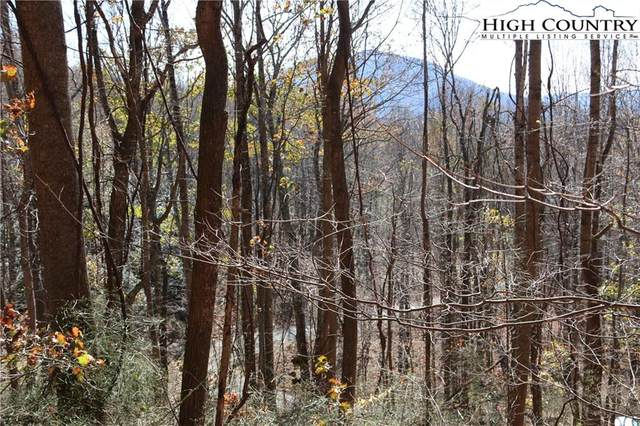 Lot 24 Mountain Shadows Road, Jefferson, NC 28640 (#226815) :: Mossy Oak Properties Land and Luxury