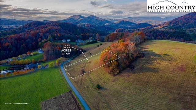 Lot 29 Hartley Knob Road Road, Boone, NC 28607 (#226867) :: Mossy Oak Properties Land and Luxury