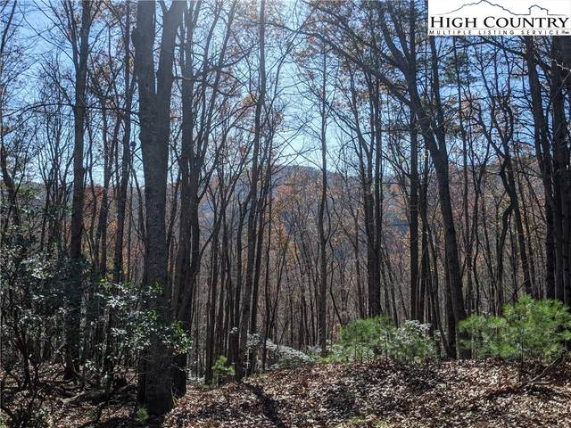 Lot 23 Laurel Circle, Deep Gap, NC 28618 (#226952) :: Mossy Oak Properties Land and Luxury