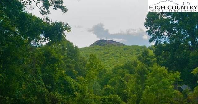 Lot 10 Quail Trail, Zionville, NC 28698 (#227002) :: Mossy Oak Properties Land and Luxury