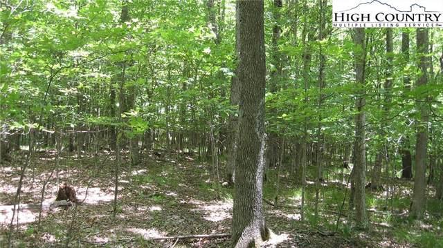 229 Upper Grouse Ridge A, Beech Mountain, NC 28604 (#227180) :: Mossy Oak Properties Land and Luxury