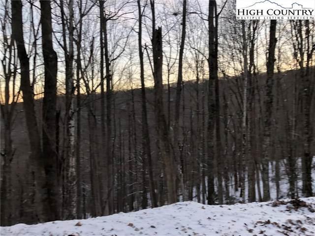 111 Hollow Tree Road, Beech Mountain, NC 28604 (#227292) :: Mossy Oak Properties Land and Luxury
