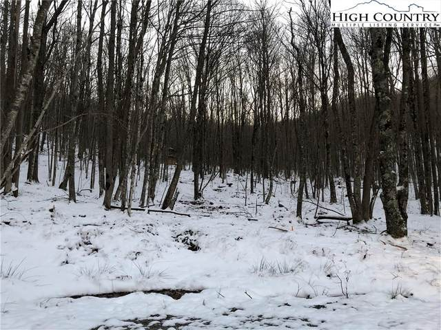 125 Aster Trail, Beech Mountain, NC 28604 (#227293) :: Mossy Oak Properties Land and Luxury