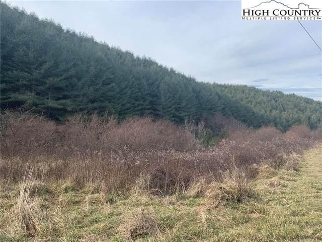 TBD Deer Path Road, Crumpler, NC 28617 (#227601) :: Mossy Oak Properties Land and Luxury